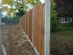 Domestic fencing